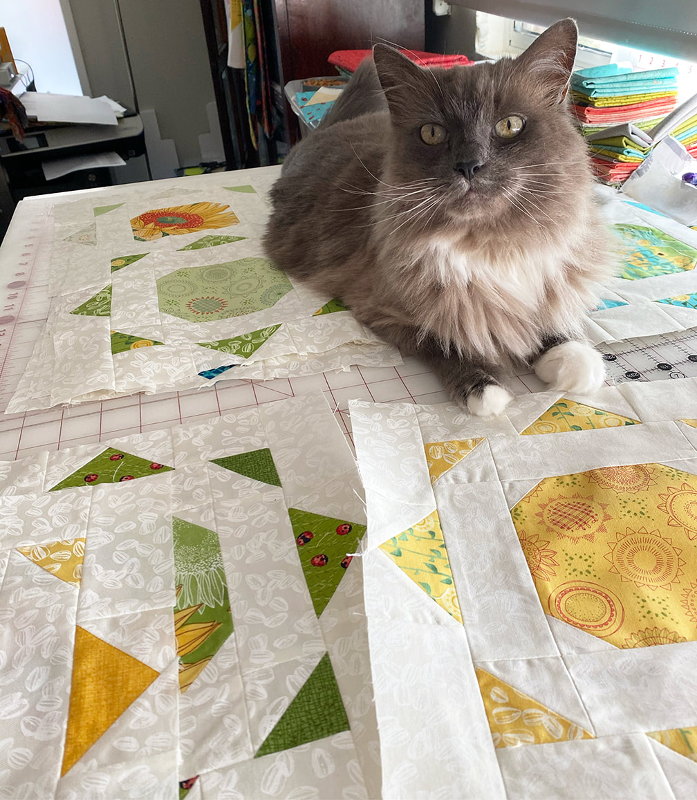 Simple Solstice quilt blocks with my cat visitor